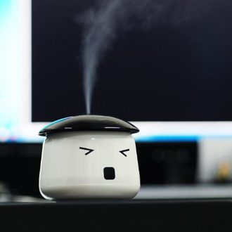 desktop humidifier: eyestrain