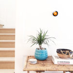 What Can You Do with your Nest Thermostat?