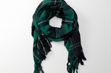 Abercrombie fringe trim blanket scarf in green plaid