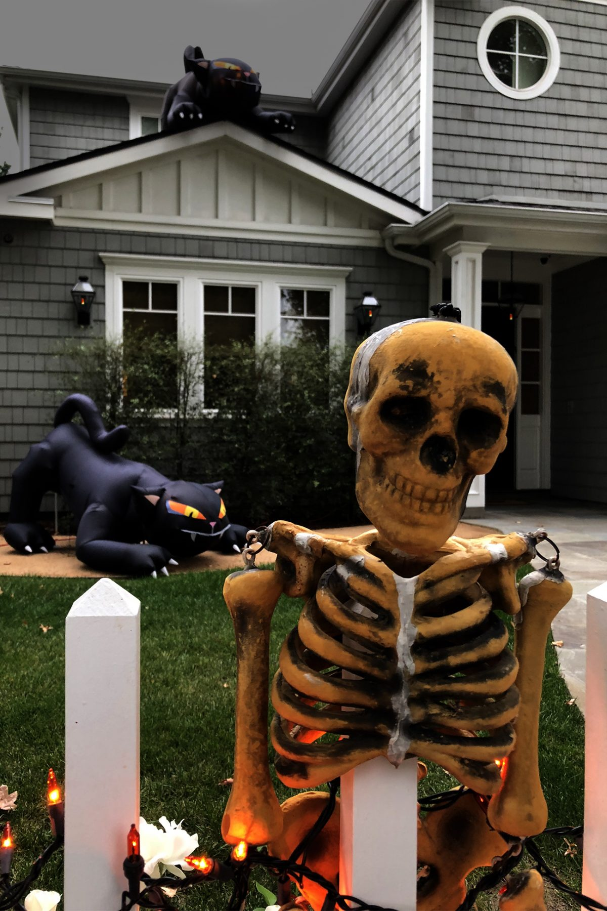 Halloween—Life 360