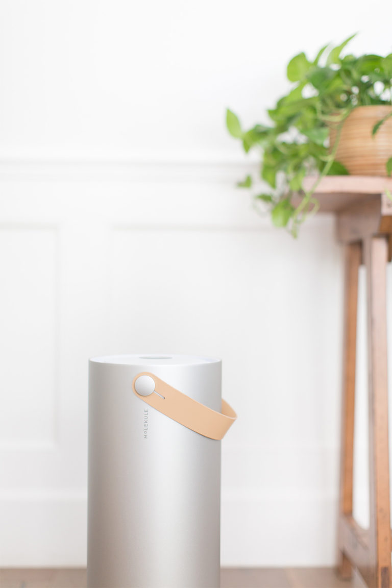 indoor air: Molekule
