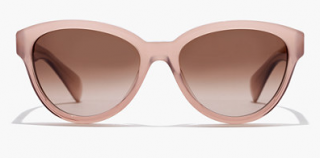 J.Crew Ryan Sunglasses