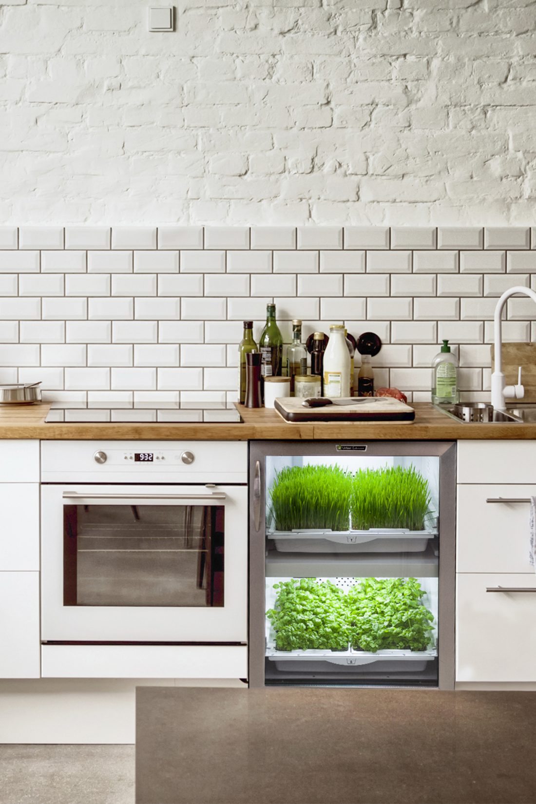 Urban Cultivator: Herbs at Home