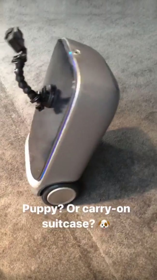 Best of CES 2018: Puppy 1