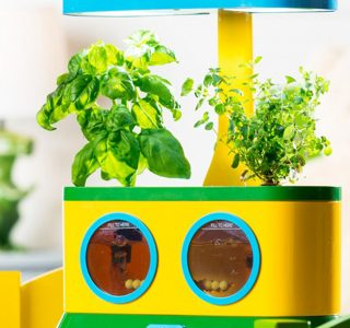 Kids Gadgets: Aerogarden Herbie