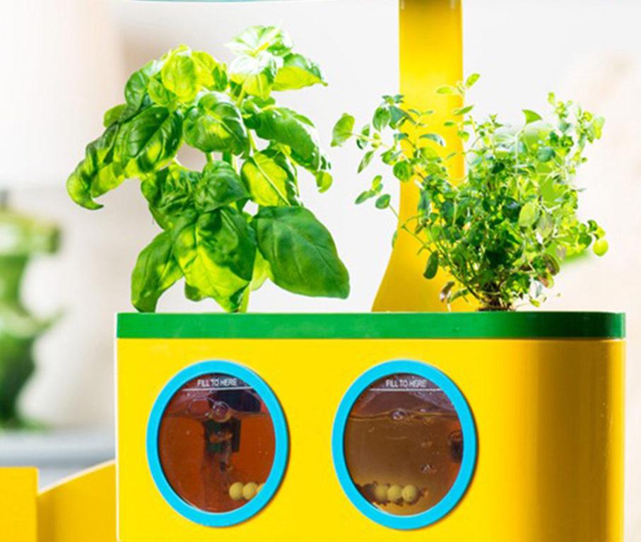 Kids Gadgets: Aerogarden Herbie