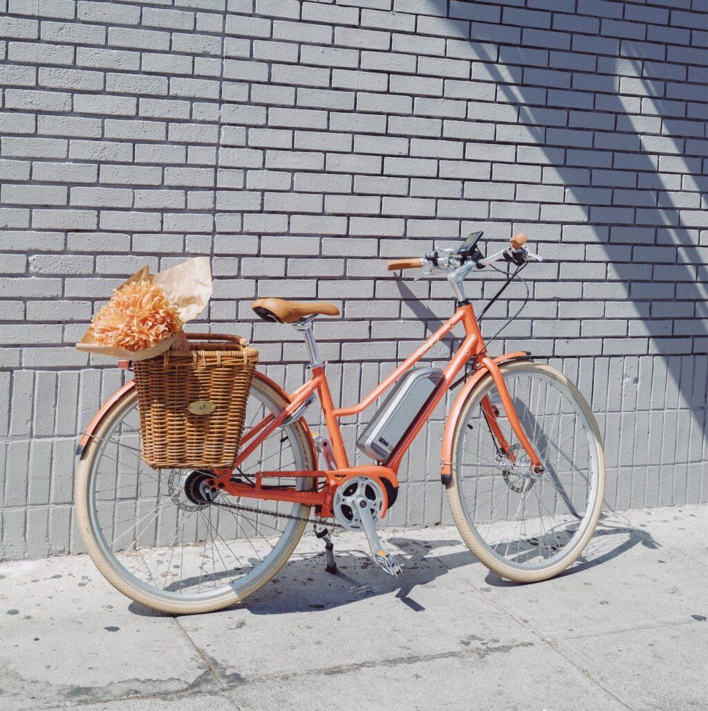 Bluejay e-Bikes